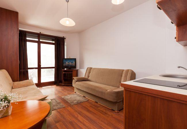 pokój dzienny, aneks kuchenny, sofy, telewizor, szafa, kuchenka, umywalka, wynajem