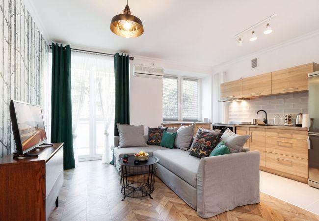 salon, aneks kuchenny, sofa, stolik, telewizor, poduszki, wejście na balkon, wynajem
