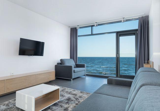 salon, sofa, stolik kawowy, fotel, widok na zewnątrz, telewizja, wynajem